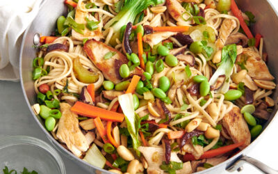 Chicken Vegetable Udon Noodle Stir-Fry